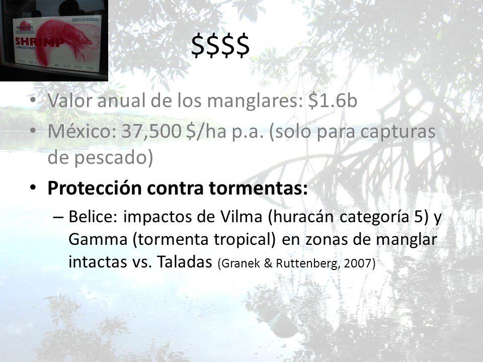 $$$$ Valor anual de los manglares: $1.6b México: 37,500 $/ha p.a. (solo para capturas de pescado) Protección contra tormentas: – Belice: impactos de V