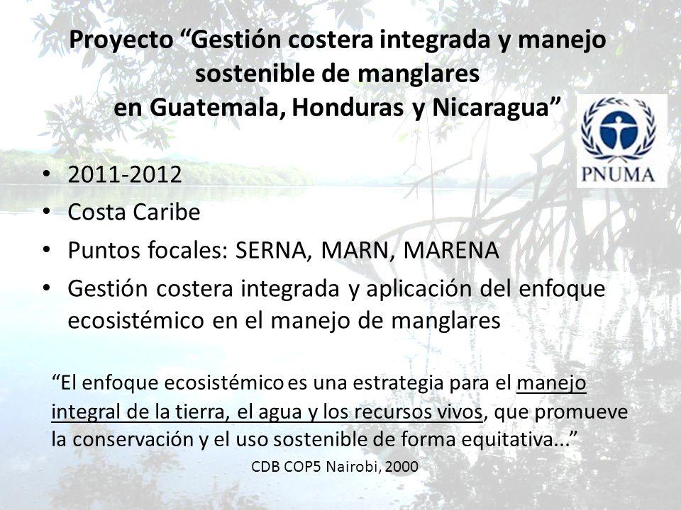 Proyecto Gestión costera integrada y manejo sostenible de manglares en Guatemala, Honduras y Nicaragua 2011-2012 Costa Caribe Puntos focales: SERNA, M