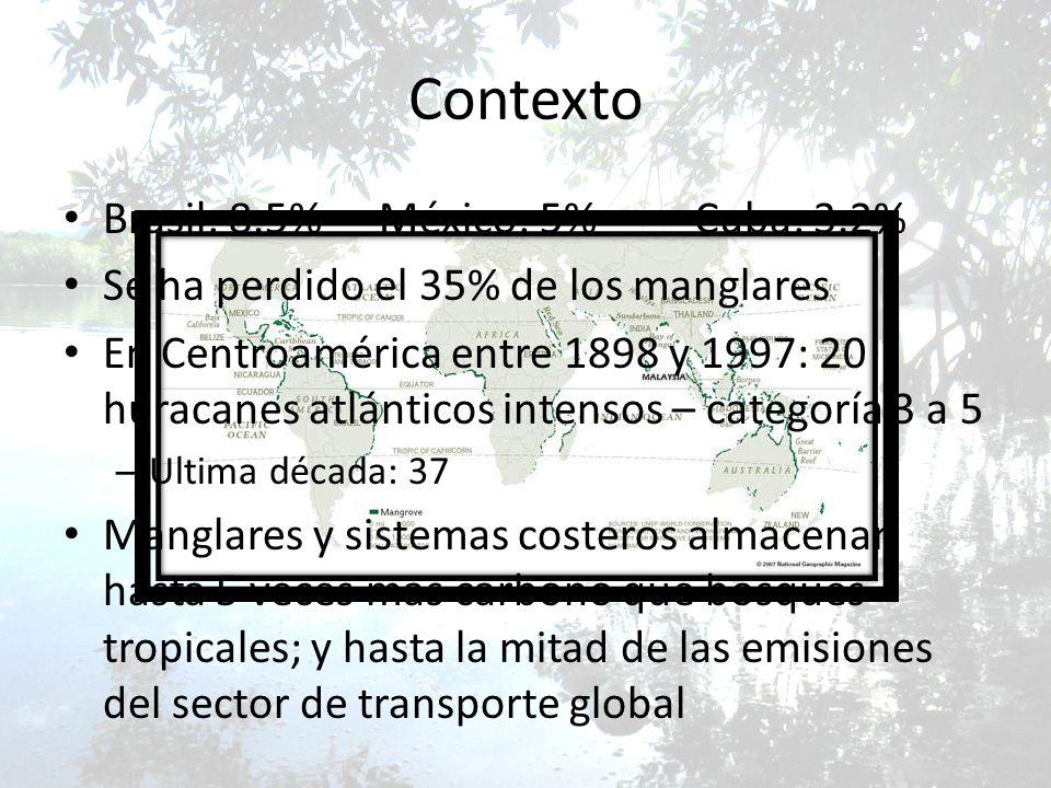 Contexto Brasil: 8.5%México: 5%Cuba: 3.2% Se ha perdido el 35% de los manglares En Centroamérica entre 1898 y 1997: 20 huracanes atlánticos intensos –