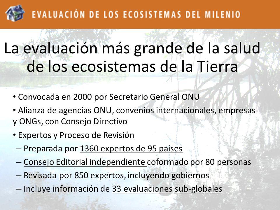 La evaluación más grande de la salud de los ecosistemas de la Tierra Convocada en 2000 por Secretario General ONU Alianza de agencias ONU, convenios i