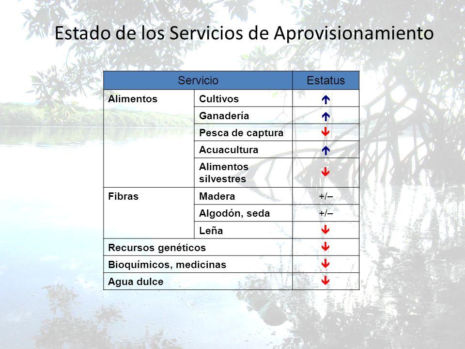 Estado de los Servicios de Aprovisionamiento ServicioEstatus AlimentosCultivos Ganadería Pesca de captura Acuacultura Alimentos silvestres FibrasMader