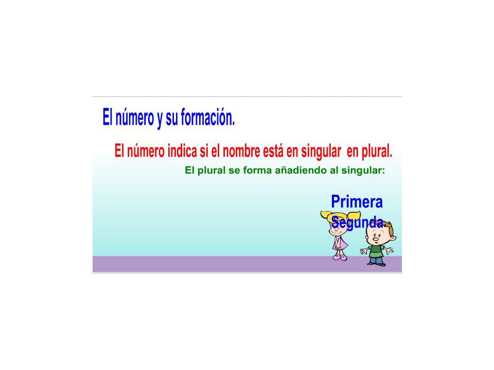 El número es una variación del nombre, que nos informa sobre la cantidad de objetos que designa: uno (singular) o más de uno (plural).