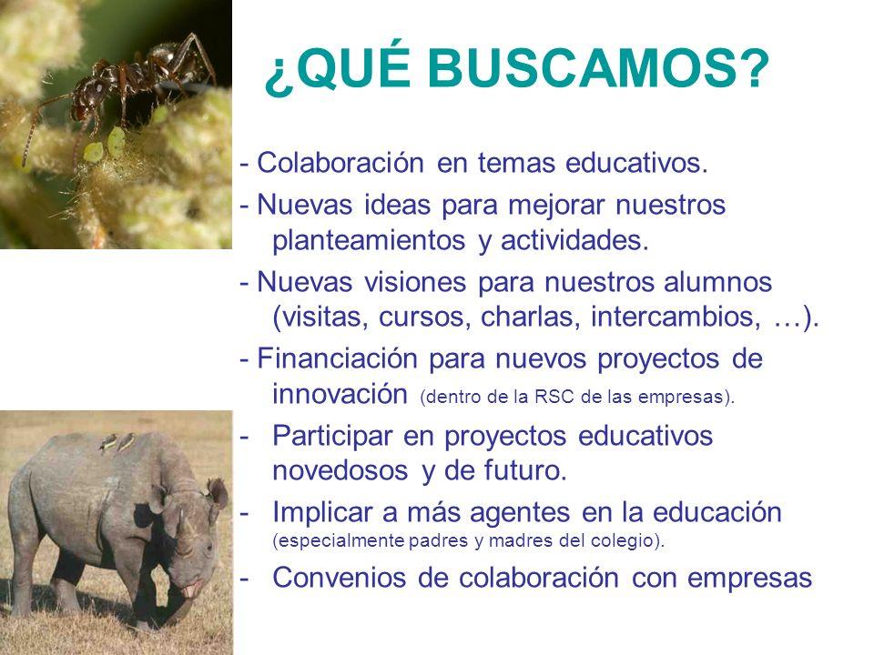 ¿QUÉ BUSCAMOS? - Colaboración en temas educativos. - Nuevas ideas para mejorar nuestros planteamientos y actividades. - Nuevas visiones para nuestros