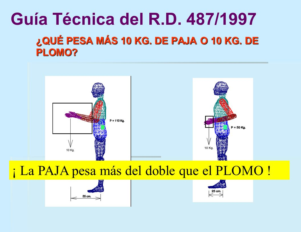 ¿QUÉ PESA MÁS 10 KG. DE PAJA O 10 KG. DE PLOMO? Guía Técnica del R.D. 487/1997 ¡ La PAJA pesa más del doble que el PLOMO !