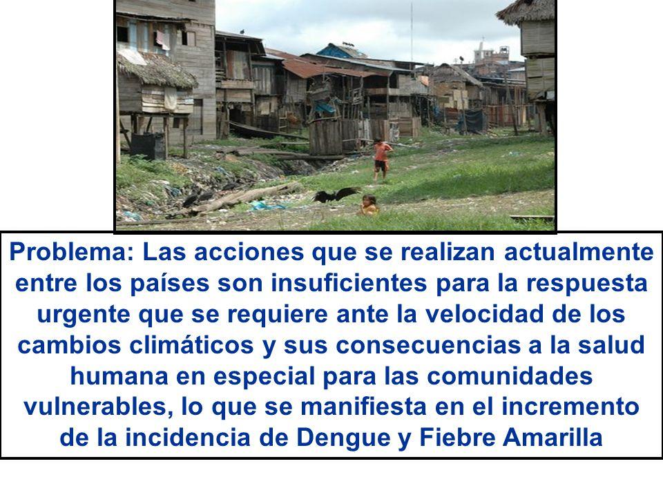 Pregunta: ¿Qué rol corresponde a la salud internacional que conlleve a dinamizar las acciones entre los países ante las consecuencias del cambio climático a la salud humana, en especial el dengue y la fiebre amarilla en las comunidades vulnerables?