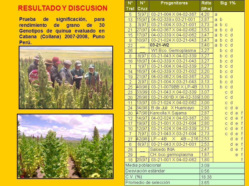 Prueba de significación, para rendimiento de grano de 30 Genotipos de quinua evaluado en Cabana (Collana) 2007-2008, Puno Perú. RESULTADO Y DISCUSION