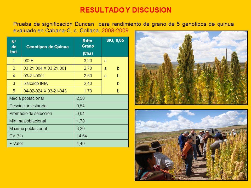 RESULTADO Y DISCUSION N° de trat. Genotipos de Quinua Rdto. Grano SIG, 0,05 (t/ha) 1002B3,20a 203-21-004 X 03-21-0012,70ab 403-21-00012,50ab 3Salcedo
