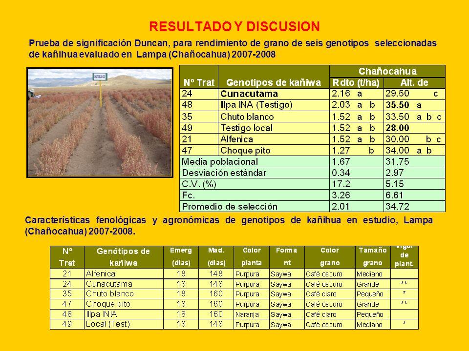 RESULTADO Y DISCUSION Prueba de significación Duncan, para rendimiento de grano de seis genotipos seleccionadas de kañihua evaluado en Lampa (Chañocah