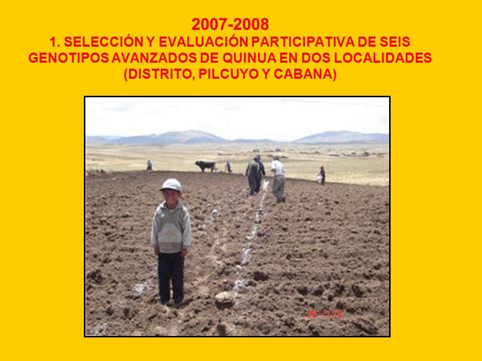 2007-2008 1. SELECCIÓN Y EVALUACIÓN PARTICIPATIVA DE SEIS GENOTIPOS AVANZADOS DE QUINUA EN DOS LOCALIDADES (DISTRITO, PILCUYO Y CABANA)