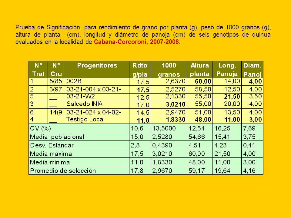 Prueba de Significación, para rendimiento de grano por planta (g), peso de 1000 granos (g), altura de planta (cm), longitud y diámetro de panoja (cm)