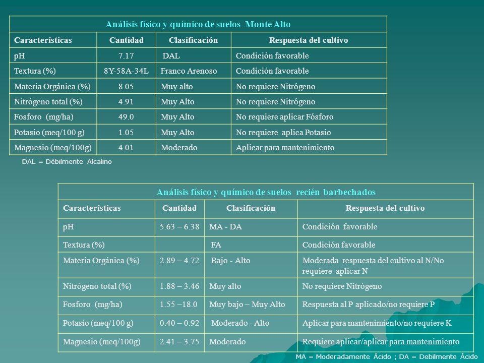 Análisis físico y químico de suelos Monte Alto CaracterísticasCantidadClasificaciónRespuesta del cultivo pH7.17 DALCondición favorable Textura (%)8Y-5