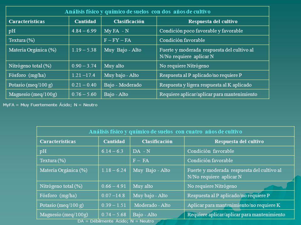 Análisis físico y químico de suelos con dos años de cultivo CaracterísticasCantidadClasificaciónRespuesta del cultivo pH4.84 – 6.99My FA - NCondición