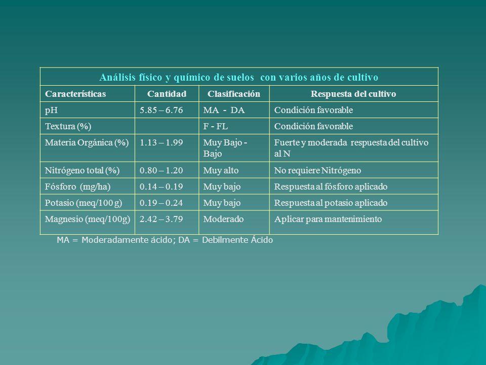 Análisis físico y químico de suelos con varios años de cultivo CaracterísticasCantidadClasificaciónRespuesta del cultivo pH5.85 – 6.76MA - DACondición