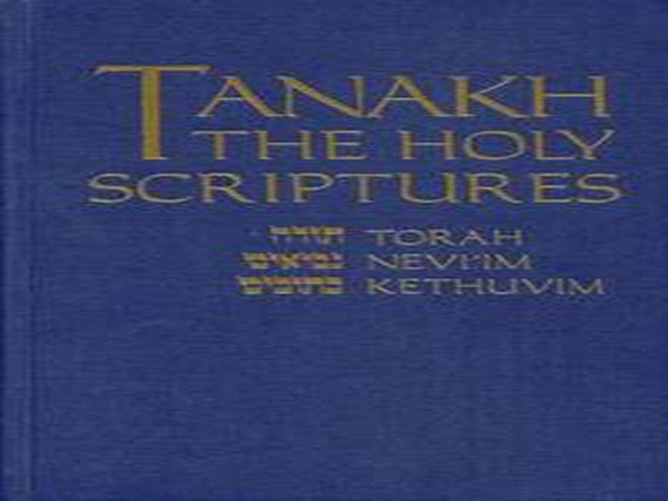 Ruinas de Jericó Biblical Archaeology Review 1990, No. 3, p. 48