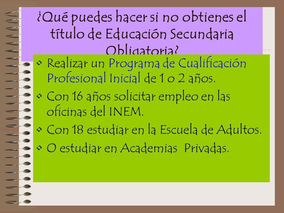 ¿Qué puedes hacer si no obtienes el título de Educación Secundaria Obligatoria? Realizar un Programa de Cualificación Profesional Inicial de 1 o 2 año