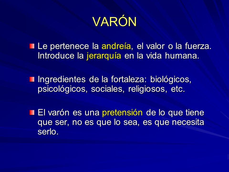 VARÓN Le pertenece la andreía, el valor o la fuerza. Introduce la jerarquía en la vida humana. Ingredientes de la fortaleza: biológicos, psicológicos,
