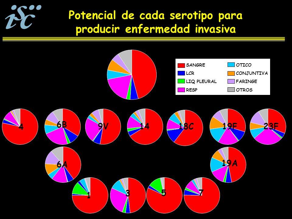 Potencial de cada serotipo para producir enfermedad invasiva SANGRE LCR LIQ PLEURAL RESP OTICO CONJUNTIVA FARINGE OTROS 6A 73 1 5 19A 4 6B 9V1419F23F18C
