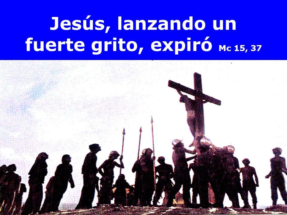Jesús, lanzando un fuerte grito, expiró Mc 15, 37