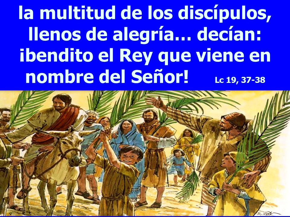 la multitud de los discípulos, llenos de alegría… decían: ¡bendito el Rey que viene en nombre del Señor! Lc 19, 37-38