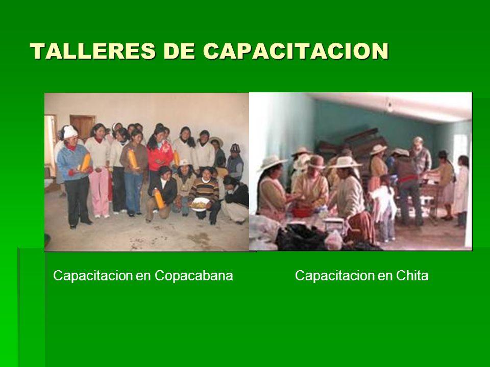 TALLERES DE CAPACITACION Capacitacion en Copacabana Capacitacion en Chita