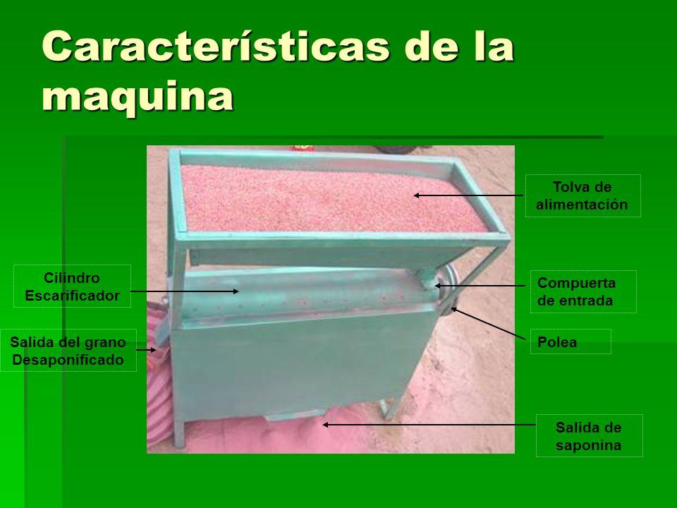 Características de la maquina Tolva de alimentación Cilindro Escarificador Salida de saponina PoleaSalida del grano Desaponificado Compuerta de entrad