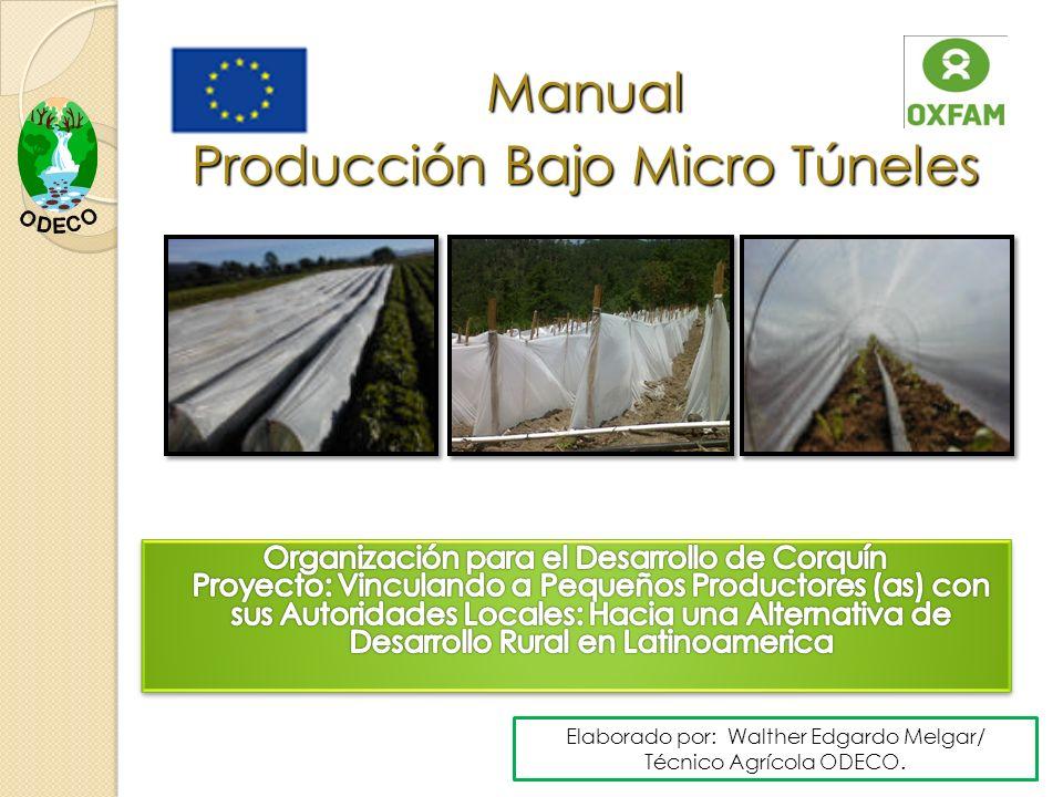 Manual Producción Bajo Micro Túneles Elaborado por: Walther Edgardo Melgar/ Técnico Agrícola ODECO.