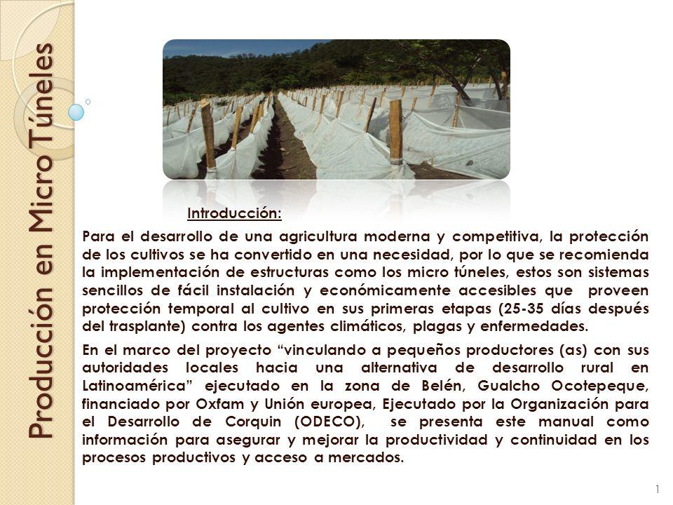 Producción en Micro Túneles Introducción: Para el desarrollo de una agricultura moderna y competitiva, la protección de los cultivos se ha convertido