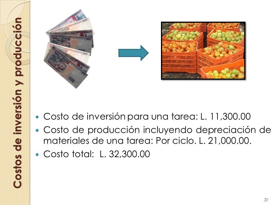 Costos de inversión y producción Costo de inversión para una tarea: L. 11,300.00 Costo de producción incluyendo depreciación de materiales de una tare