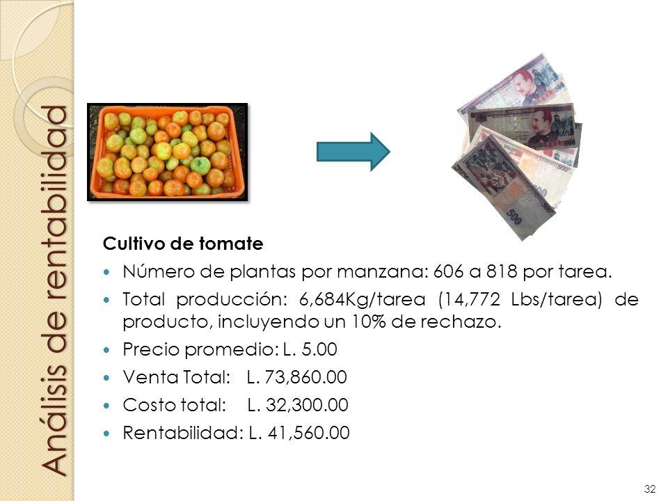 Análisis de rentabilidad Cultivo de tomate Número de plantas por manzana: 606 a 818 por tarea. Total producción: 6,684Kg/tarea (14,772 Lbs/tarea) de p