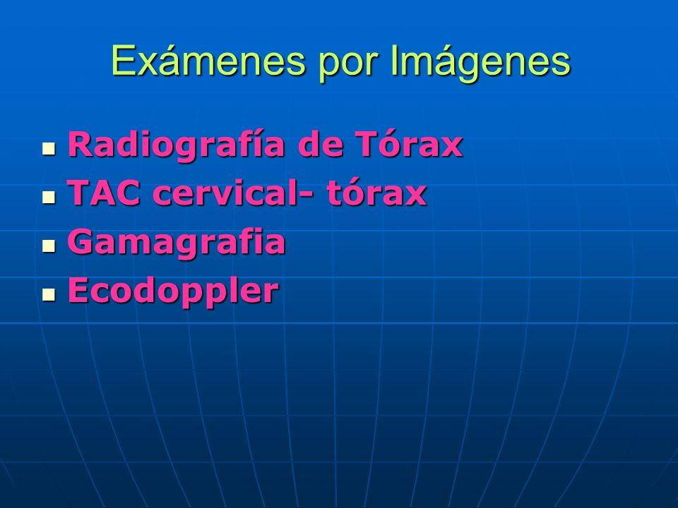 Exámenes por Imágenes Radiografía de Tórax Radiografía de Tórax TAC cervical- tórax TAC cervical- tórax Gamagrafia Gamagrafia Ecodoppler Ecodoppler