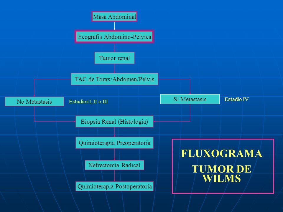 Masa Abdominal Ecografia Abdomino-Pelvica Tumor renal TAC de Torax/Abdomen/Pelvis No Metastasis Si Metastasis Estadios I, II o III Estadio IV Biopsia