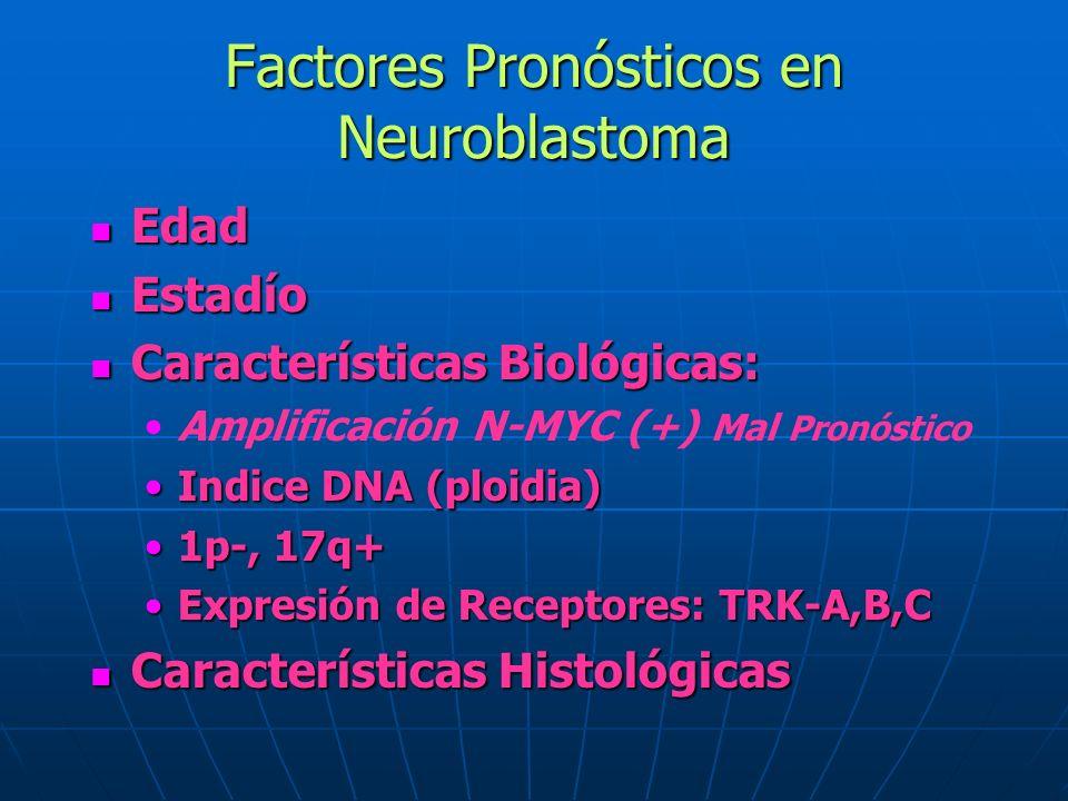 Factores Pronósticos en Neuroblastoma Edad Edad Estadío Estadío Características Biológicas: Características Biológicas: Amplificación N-MYC (+) Mal Pr