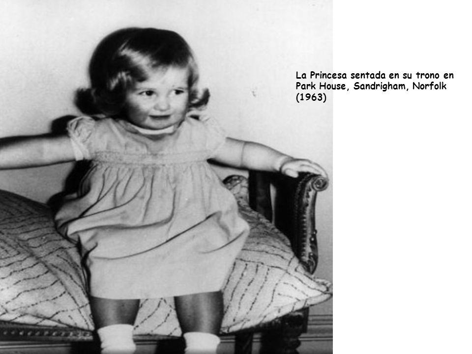 La princesa con su segundo hijo el principeHenry Charles Albert David nacido en 1984.