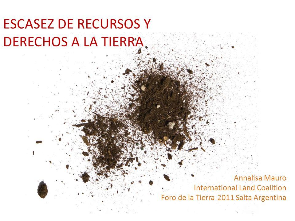 Annalisa Mauro International Land Coalition Foro de la Tierra 2011 Salta Argentina ESCASEZ DE RECURSOS Y DERECHOS A LA TIERRA