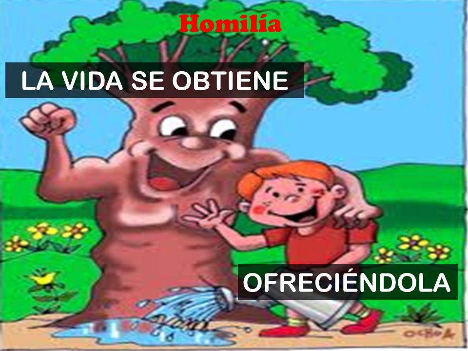 Homilía LA VIDA SE OBTIENE OFRECIÉNDOLA