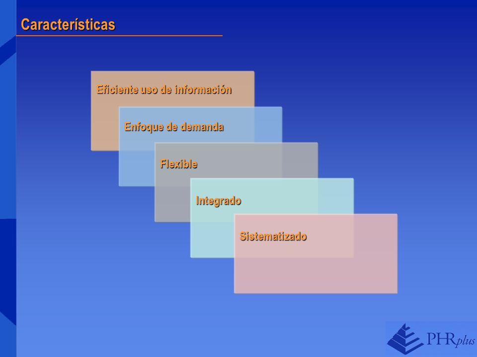 Características Eficiente uso de información Enfoque de demanda Flexible Integrado Sistematizado