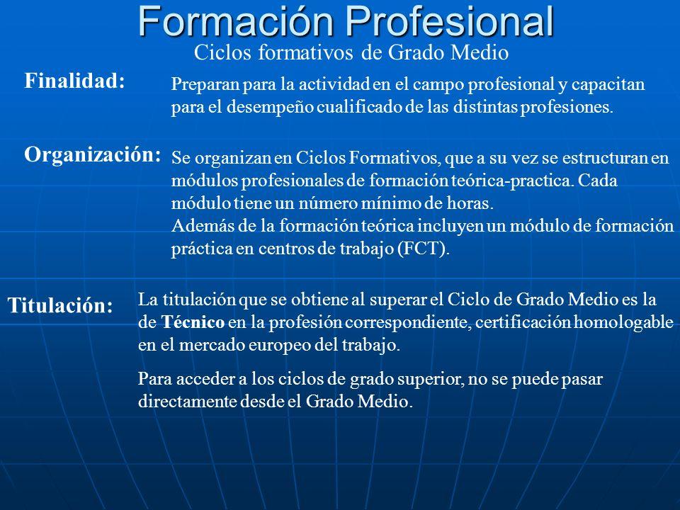 Formación Profesional Ciclos formativos de Grado Medio Finalidad: Preparan para la actividad en el campo profesional y capacitan para el desempeño cualificado de las distintas profesiones.