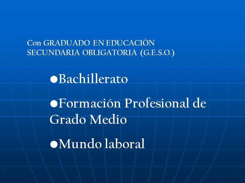 Con GRADUADO EN EDUCACIÓN SECUNDARIA OBLIGATORIA (G.E.S.O.) Bachillerato Formación Profesional de Grado Medio Mundo laboral
