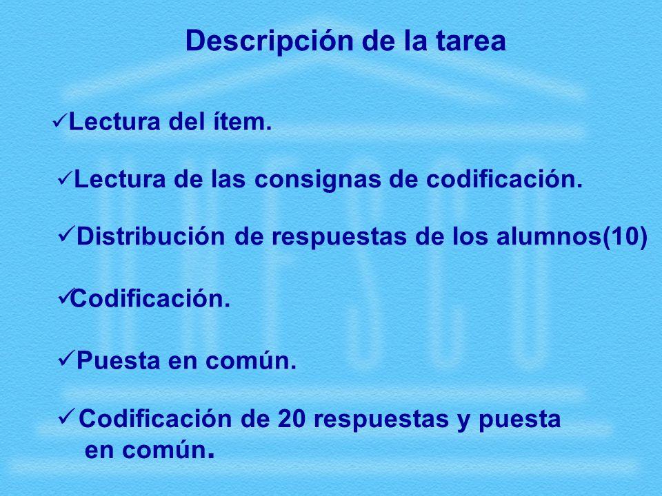 Descripción de la tarea Codificación. Puesta en común.