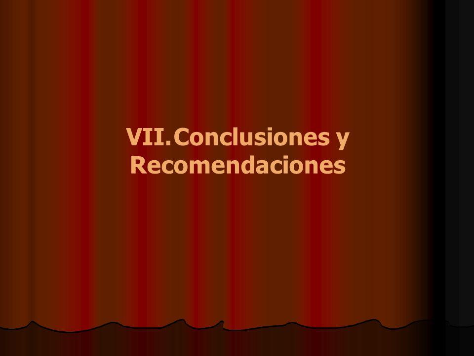 VII.Conclusiones y Recomendaciones