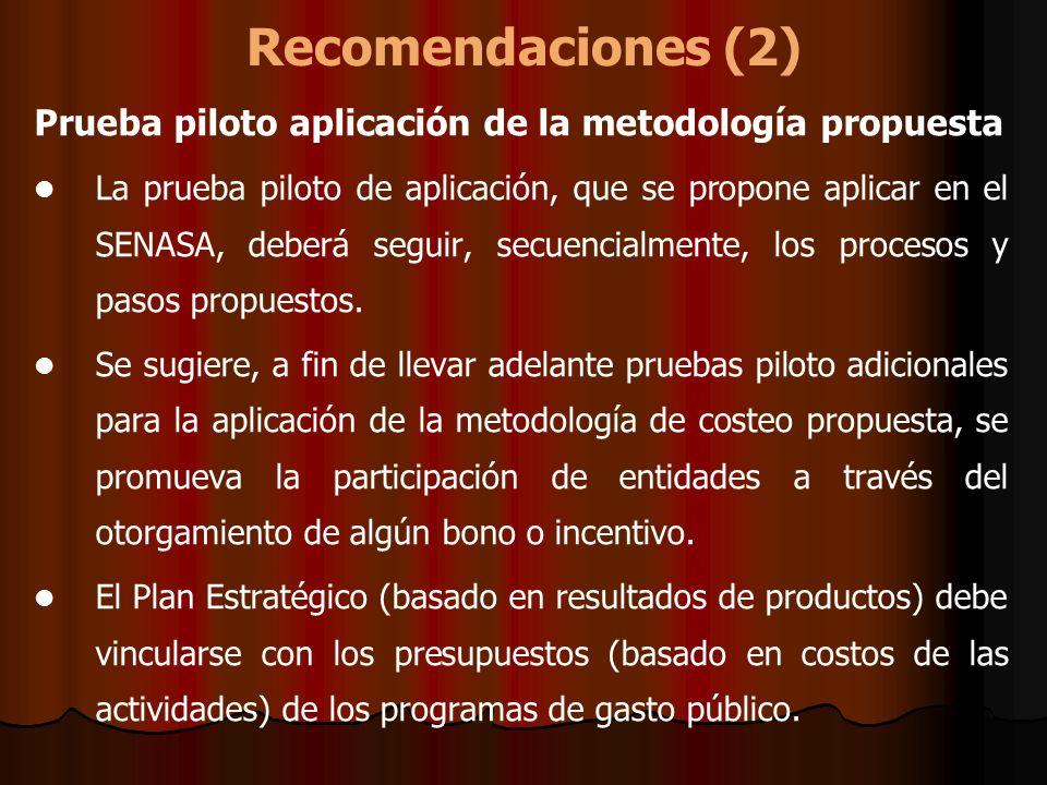Recomendaciones (2) Prueba piloto aplicación de la metodología propuesta La prueba piloto de aplicación, que se propone aplicar en el SENASA, deberá s