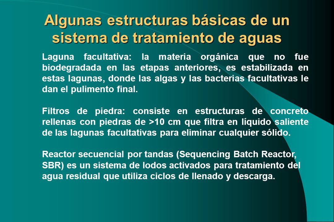 Algunas estructuras básicas de un sistema de tratamiento de aguas Laguna facultativa: la materia orgánica que no fue biodegradada en las etapas anteri