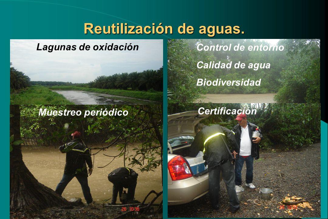 Lagunas de oxidación Control de entorno Calidad de agua Biodiversidad Muestreo periódico Certificación