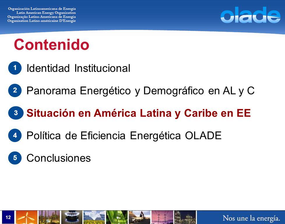 12 Contenido Identidad Institucional Panorama Energético y Demográfico en AL y C Situación en América Latina y Caribe en EE Política de Eficiencia Ene