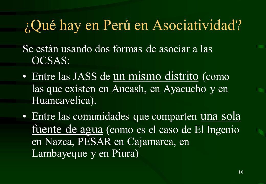 9 ¿Hay JASS en otros países? Las mejores están en Paraguay, Argentina y Bolivia. En Argentina y en Bolivia no hay JASS sino Cooperativas de Servicios