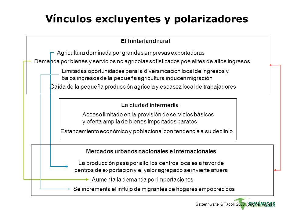 Satterthwaite & Tacoli 2003 (original ingles) Vínculos excluyentes y polarizadores El hinterland rural Agricultura dominada por grandes empresas expor