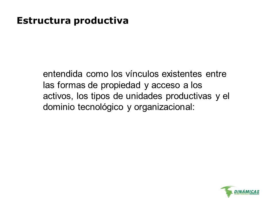 Estructura productiva entendida como los vínculos existentes entre las formas de propiedad y acceso a los activos, los tipos de unidades productivas y