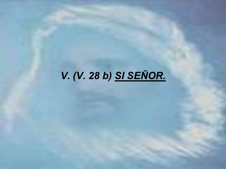 V. (V. 28 b) SI SEÑOR.