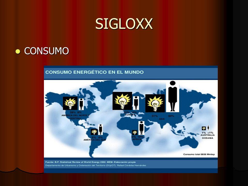 SIGLOXX CONSUMO CONSUMO