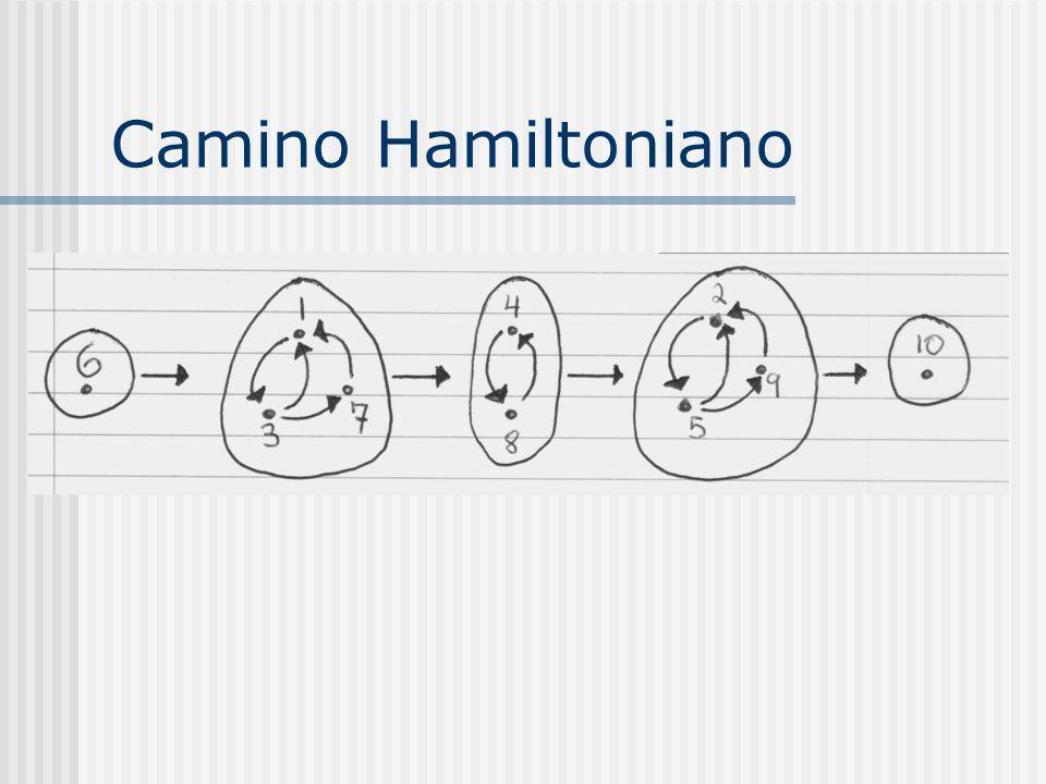 Camino Hamiltoniano